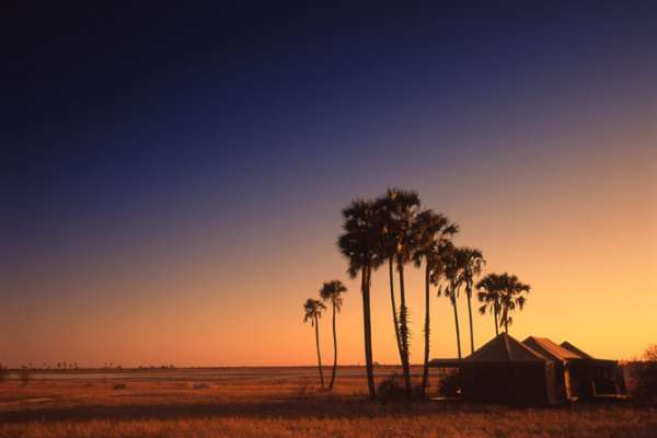 Jack's Camp in the Makgadikgadi Pans
