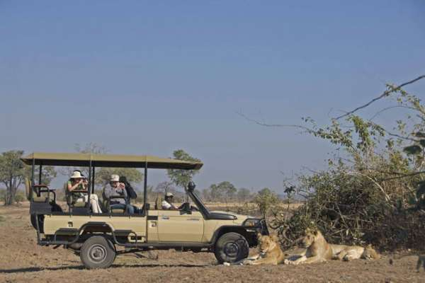 On safari in the South Luangwa National Park
