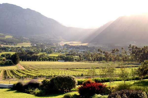 The Constantia Valley, situated south of Cape Town, is the cradle of the South African wine industry