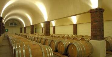 CellarTour