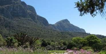 Kirstenbosch-001