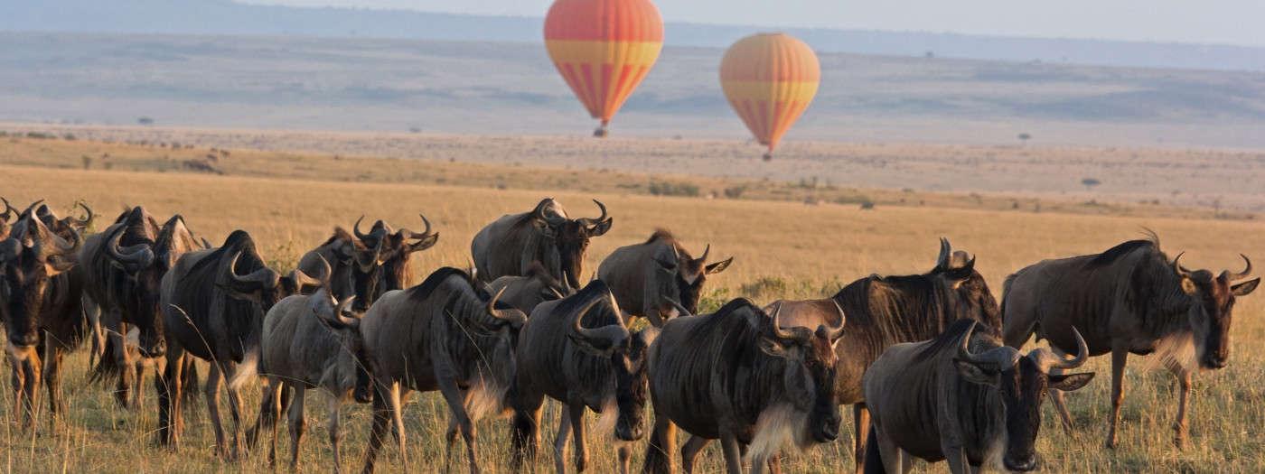 destinations_kenya_masai-mara_balloons_istock_000048013098_large-1400x525