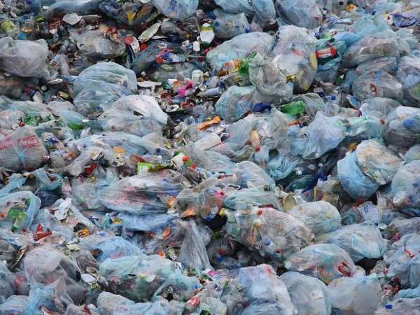 No More Plastic Bags on Holidays in Kenya