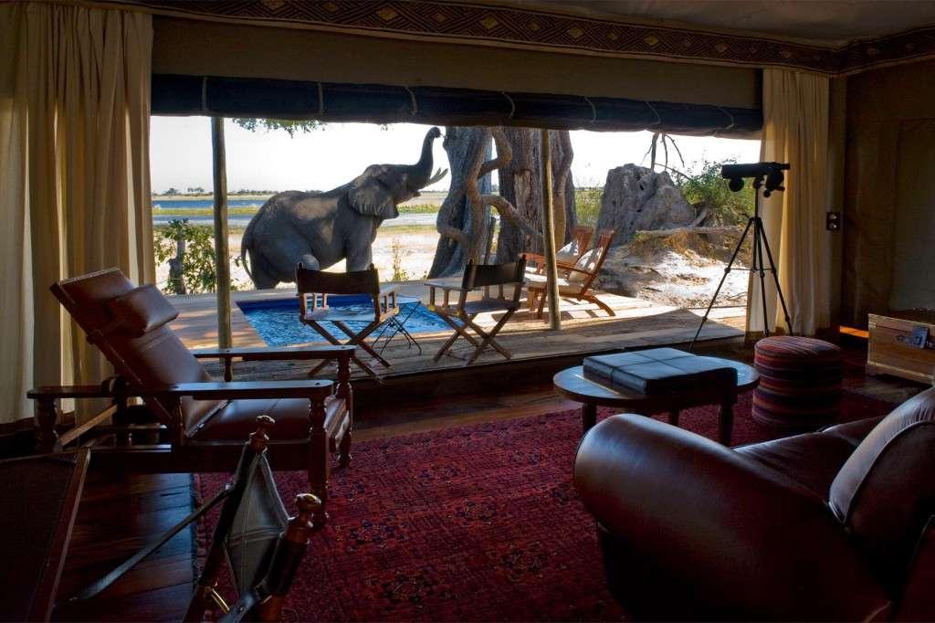 Botswana_Zarafa camp102
