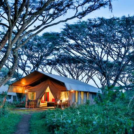 Image of Lemala Ngorongoro Tented Camp, Ngorongoro Crater