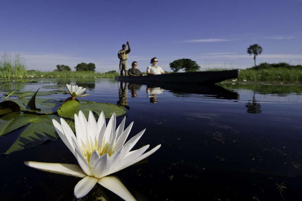 Okavango Delta mokoro, Botswana - Wilderness