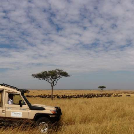 Image of Lemala Ewanjan Tented Camp, Serengeti National Park