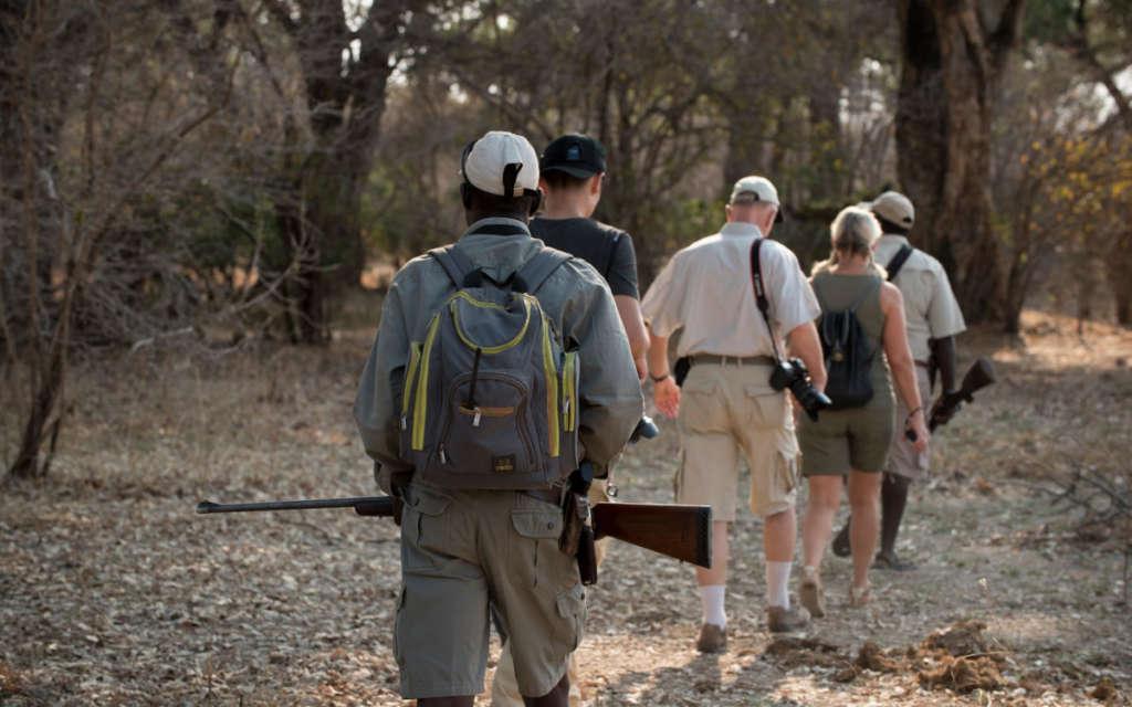 Botswana walking safari
